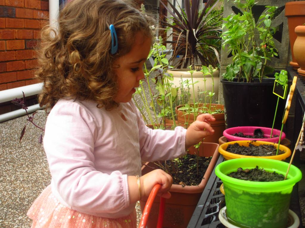 Gardening | Trying to be an eco-mum on a budget