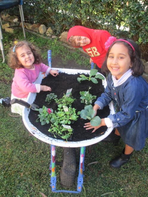 Happy little planters