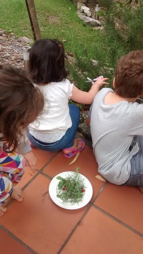 herbs-kids