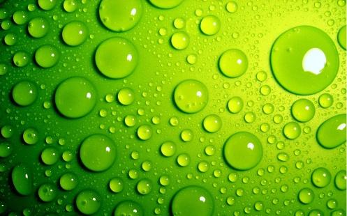 Green-Wallpaper-11